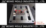 Qualitätseinspritzung-Plastikladeplatten-Form-Fabrik