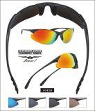 Sunglasses (10193)