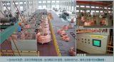 Moulin électrique de Rooling de produit de Changhaï (cp)