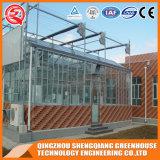 Estufa do vidro temperado do jardim vegetal da agricultura de China