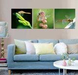 3 لون جدار فنية [أيل بينتينغ] يعسوب صورة زيتيّة منزل زخرفة يطبع نوع خيش صورة لأنّ يعيش غرفة [مك-260]