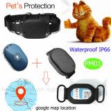 애완 동물 개인적인 Pm01를 위한 Geo 담을%s 가진 IP66 소형 GPS 추적자