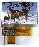 "Di3.5~10.0 "" de Mini Sterke Schoonmakende Machine Ultraonic van TFT LCD Modulegital (JP-890)"