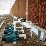 온실과 가금 농장 (5090/7090)를 위한 증발 냉각 패드