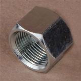 90o Metric Female 24o Cone O-Ring L.T Hydraulic Hose Fitting