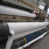 Comprimento do rolo 100m 500G/M2 aterro não tecidos de poliéster Produtos Preço Mais Baixo na China