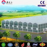 강철 구조물 Prefabricated 녹색 집