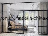 Ferro exterior moderno Windows francês para a casa