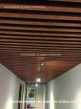Bouwmateriaal van het Plafond Designes van pvc/het Comité van de Muur van pvc