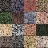 Granito de pedra natural polido para pavimento Parede ou bancada (YQG-GT1008)