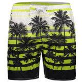 I circuiti di collegamento della spiaggia rapidamente asciugano la stampa di ricreazione dell'albero di noce di cocco di Shorts dello Swimwear