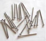 기계 사슬 또는 못 장비 기계를 만드는 중국 못