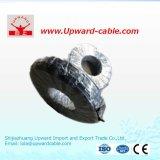 BVV 2.5mm2 isolés en PVC électriques en cuivre sur le fil de ménage