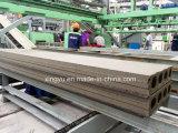 Produtos prefabricados de extrusão do Painel da Parede da linha de produção