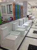 Filigrane porcelaine sanitaire (EC-AZ6009)