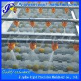 Máquina de la arandela de aerosol de la presión de la legumbre de fruta conservada