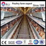 Matériel de reproduction de la volaille Couche automatique de la cage de poulet