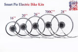 지능적인 Pie 5 200W/250W/400W Electric Bicycle Hub Motor/Electric Bike Conversion Kit