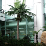 가정 훈장을%s 상록 인공적인 코코넛나무