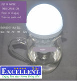 LED Emergency Bulb o LED Emergency Lamp