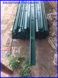 ツルプラントブドウ園のブドウの棒の熱い浸された電流を通された金属のブドウ園のトレリスのポスト