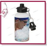 500ml White/bottiglia di acqua di Silver per Sublimation da Mejorsub