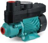 마이크로 와동 펌프, 말초 펌프 깨끗한 물 펌프