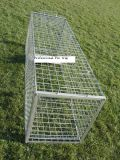 Humanistic Hunting Live Animal Trap Cages para pegar ratos / Mink / Roent