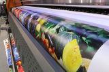 屈曲の旗の印刷のためのInfiniti元の3.2m/10FT Eco支払能力があるプリンター