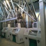 30t de la planta de molienda de harina de alforfón