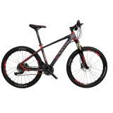 Bicicleta de Beacutiful com os acessórios e Xcm de Shimano da parte alta forquilha hidráulica