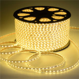 Color blanco 60LED SMD2835 220V IP65 de la luz de la cuerda de LED