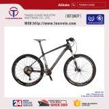 도매 자전거 프레임 21 속도 알루미늄 접히는 자전거