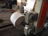 Máquina de impresión flexográfica de alta velocidad por el cine de la bolsa para el rollo de papel