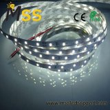 60 LEDs/LED/M 120 M de tira de LED Flexible con Ce RoHS