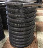 Accueil du tube à vapeur de la chaudière de chauffage, de combustible de chauffage du tube en acier inoxydable