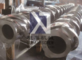Schraube 38crmoala (mit Zylinder) für Gummimaschine