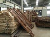 Revestimento ao ar livre impermeável da plataforma de Bambooo com bambu tecido costa