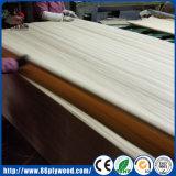 スライスされた切口の白い偵察のタイプの木製のベニヤを等級別にしなさい