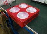 La PANNOCCHIA calda LED del prodotto 300W 450W 600W 1000W coltiva gli indicatori luminosi