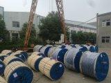 De Kabel van de macht/Draad met de Leider van het Koper of van het Aluminium op Olie/Gasveld wordt gebruikt dat