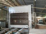 20 de 800tons camadas da imprensa quente da madeira compensada