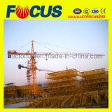 2 gru a torre di costruzione rapida di tonnellata Qtk20 da vendere
