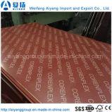 Anti-Slip WBP Glue Marine Plywood/Film Faced Plywood