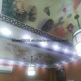 Потолок декоративных панелей деревянный пластичный составной