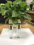 De lege Flessen van /Perfume van de Flessen van de Roller van het Glas