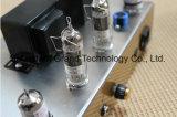 châssis d'ampère de guitare de Handwired de type de Tremolo de 18W Marshall (G-18WC)
