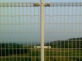 PVC double Circle department Fence with High quality (TS-J34)