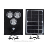 6W Intergrated Solar Road / Garden Lamp