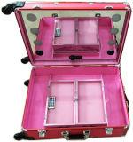 Het professionele Kosmetische Geval van de Verpakking van de Studio van de Houder van de Make-up (hb-3600)